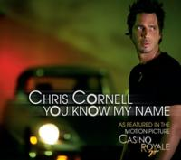Chris Cornell - You Know My Name (James Bond Casino Royale) cover