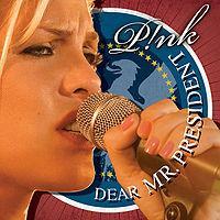 Pink ft. Indigo Girls - Dear Mr. President cover