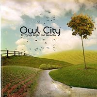 Owl City - Dreams Don't Turn To Dust cover