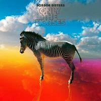 Scissor Sisters - Only The Horses cover