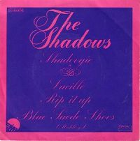 The Shadows - Shadoogie (instrumental) cover