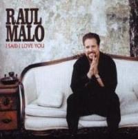 Raul Malo - I Said I Love You cover