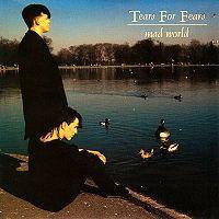 Tears for Fears - Mad World cover
