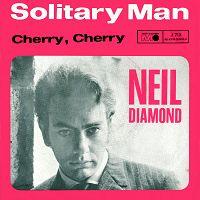 Neil Diamond - Solitary Man cover