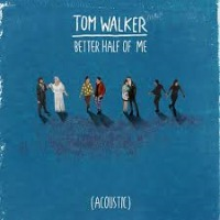Tom Walker - Better Half of Me cover