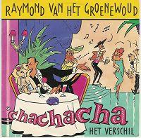 Raymond van het Groenewoud - Cha cha cha cover