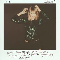 Taylor Swift - Shake It Off cover