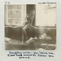 Taylor Swift - Wildest Dreams cover