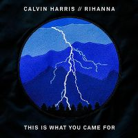 Calvin Harris ft. Rihanna - This Is What You Came For cover