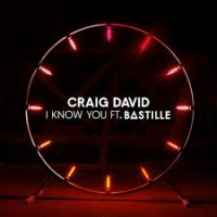 Craig David ft. Bastille - I Know You cover