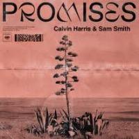 Calvin Harris & Sam Smith - Promises cover