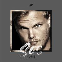 Avicii ft. Aloe Blacc - SOS cover