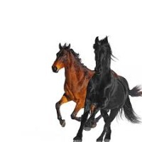 Lil Nas X ft. Billy Ray Cyrus - Old Town Road remix cover