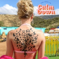 Taylor Swift - You Need to Calm Down cover