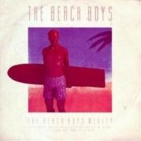 The Beach Boys - Beach Boys Medley cover