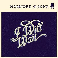 Mumford & Sons - I Will Wait cover