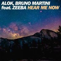 Alok & Bruno Martini ft Zeeba - Hear me now cover