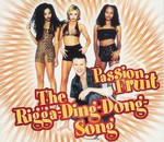 Passion Fruit - The Rigga-Ding-Dong-Song cover