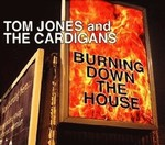 Tom Jones - Burning Down The House cover