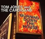 Tom Jones - Burning Down The House cover