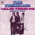The Tremeloes - Call Me Number One cover