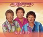 Die Flippers - Bye Bye Belinda cover