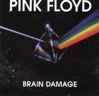 Pink Floyd - Brain Damage cover