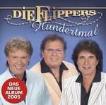 Die Flippers - Du bist ein ungelöstes Rätsel cover